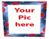 (PHA) Poppy frame