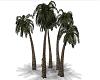 Animated Palms w/ Shadow