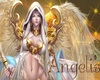 Angelis family banner 1