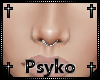 PB Derivable septum