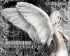 Dead Angel Girl