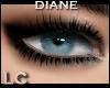 LC Diane Smokey Eyes