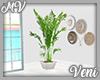 *MV*  Plant