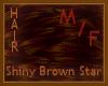 Shiny Brown [Star]