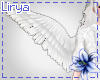 Holy Angel Wings