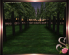 $$ Serenity Forrest