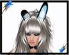 Bunny Ears-Blue Luv