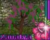 Zana Country Pinky Tree