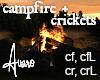 Campfire Crickets Sound