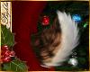 I~Reindeer Tail*Nutmeg
