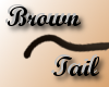 Smooth Brown Tail