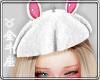 ♉ Bunny Beret