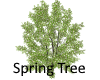 Spring Tree - Flower