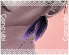 Midnight Feathers