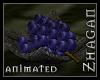[Z] Feed me Grape!