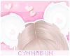 🌠 Bearycute White