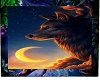 dreamcatcher wolves nati