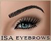 ISA)KD Brows 1 -Black