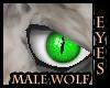 ASP) Wolf Eyes Male
