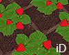 iD: Strawberry Patch
