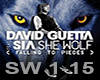 ~M~ David Guetta SheWolf