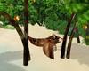 [E] playa Palm hammock
