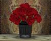 ~SB  Blood Roses