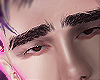 </3 brows