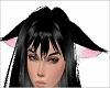 Dropy Cat Ears