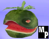 Watermellon Pet