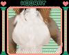 [H!] Moch-Mach chest tft