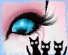 Furry Blue Eyes