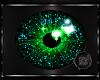 ~BB~ Star Teal/green