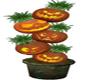 PUMPKIN PLANT DECO (KL)