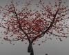 (DiMir)Red Club Tree