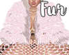Candy Fur ♥