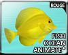 |2' Ocean Fish I