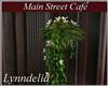 ~L~ Cafe- Hanging Flower