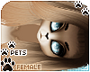 [Pets] Kimi | Cailsey