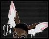 CK-Muzi-Ears 4