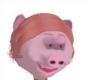 pig head female
