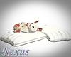 Animated Kitty w pillows