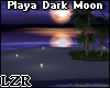Room Beach Dark Moon
