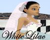 Pretty in White Veil