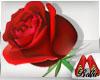 (BL)Rose Love VALENTINE