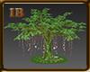 [0V2] Tree