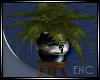 FERN ON STAND/ PLANT
