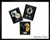 Framed Music Albums x3