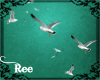 -ȵ- Seagulls Enhancer