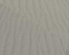 sable 02
